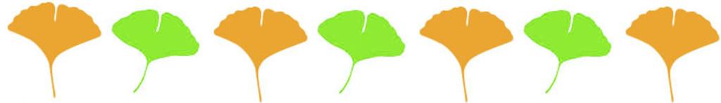 銀杏の葉1