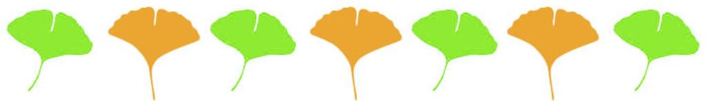 銀杏の葉2